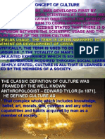 Culture Meaning and Characteristics 2