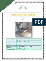 LAB METALURGICO_flotacion.pdf