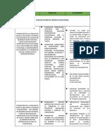 METAS - OBEJTIVOS - ACTIVIDADES TERAPIA OCUPACIONAL..docx