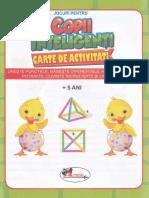 Jocuri pentru copii inteligenti. Carte de activitati 5 ani.pdf