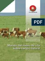 Manejo del rodeo de cría sobre  campo natural