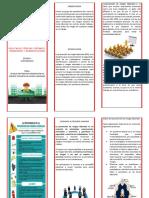 triptico-comprimido (1).pdf