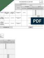 Programa Anual de Auditoría