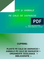 plantesianimalepecalededisparitie-1