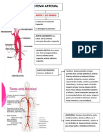 Mapa Sistema Arterial 160816013430