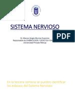 Embr 16 Sistema Nervioso Munive