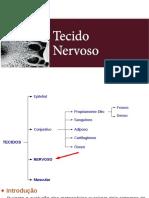 Histologia do Tecido Nervoso