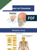 Anatomy Cranium PSKG Blok-2 2019