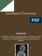 Charla Levaduras 25-07-16.pdf