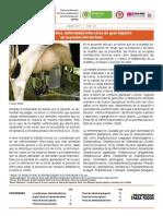 insumos_factores_de_produccion_ago_2014.pdf