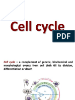 Ciclul Celular Engl