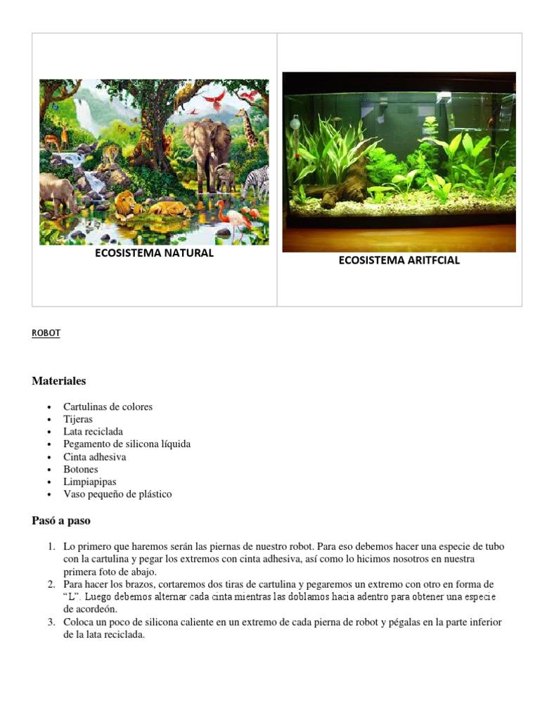 L Nikou Alimentador de Tortuga Reptile Rock Alimentador de Plato de Agua y Comida Recipiente Resistente a la corrosi/ón Borde Liso para Tortuga de Agua