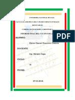 Informe Final Acelga