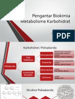 Metabolisme Karbohidrat.pdf