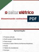 SPEECH O Setor Eletrico 2014