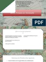 sector primario en Venezuela HGyC