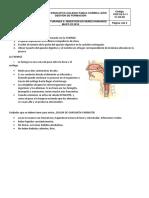 PARTES SISTEMA DIGESTIVO CORRECTAS. 5.pdf