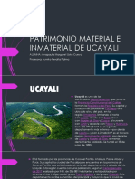 Patrimonio Material e Inmaterial de Ucayali