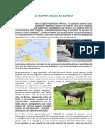 EL BOVINO CRIOLLO EN EL PERU.docx
