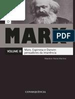 Colecao NIEP-Marx v.3.pdf