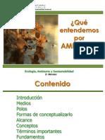 1ra Clase bloque Ambiente.pdf