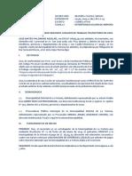 Demanda de Amparo Obligacion de Dar Suma de Dinero-liquidacion Laboral-Palomino