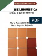 Análise Linguistica