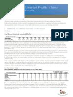 China Market Profile 2013