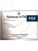 Pleistocene in Pakistan