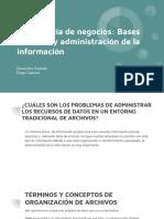Inteligencia de Negocios_ Bases de Datos y Administración de La Información