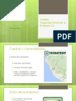 Análisis_Organizacional_de_la_Empresa_XX[1].pptx