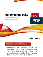 Neurobiologia CLASE 3 Diurno