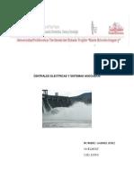 Centrales Electricas y Sistemas Asociados