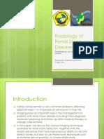 Radiology of Renal Stone Disease.pptx