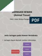 JARINGAN HEWAN-1