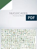 B101 Nucleic Acids