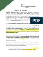 317782222-DEMANDA-DE-EJECUCION-DE-GARANTIAS.pdf