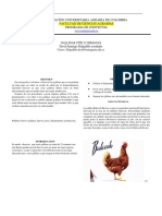 Informe Gallinas