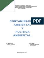 Contaminacion Ambiental y Politica Ambiental.