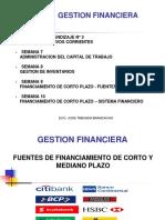 Gf Fuentes de Financiamiento Corto y Mediano Plazo v1