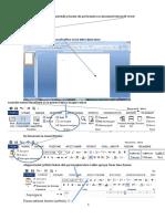 Formatarea Documentului Word