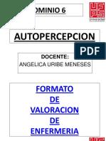 dominio autopercepcion ufps1