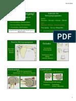 02 Anatomie.pdf