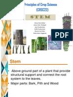 STEM-bsabe-2b.pptx
