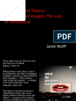After Cultural Theory The Power of images, the Lure of Immediacy