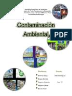 Trabajo de Contaminación Ambiental (Recuperado)