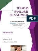 5. Terapias Familiares No Sistémicas