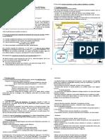 PDF Tema 3 - La Revolución Industrial 1920