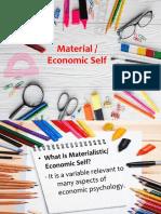 Material Economic Self