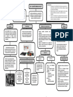 Mapa Conceptuales LSP